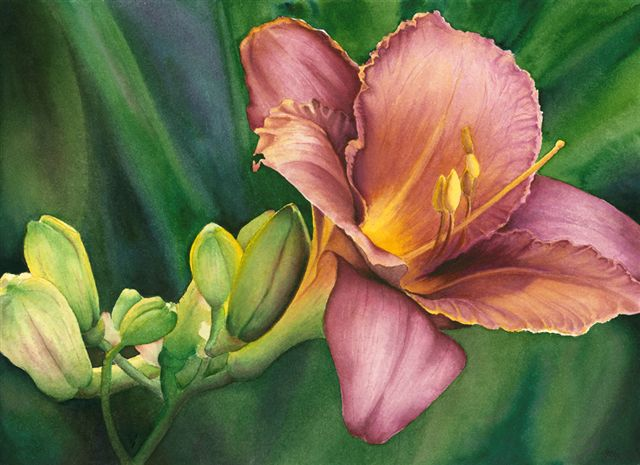 "LOVELY LILY - 15X10"" - watercolor"