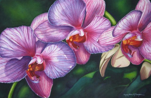 "THE ORCHIDS - 22x15"" - watercolor"