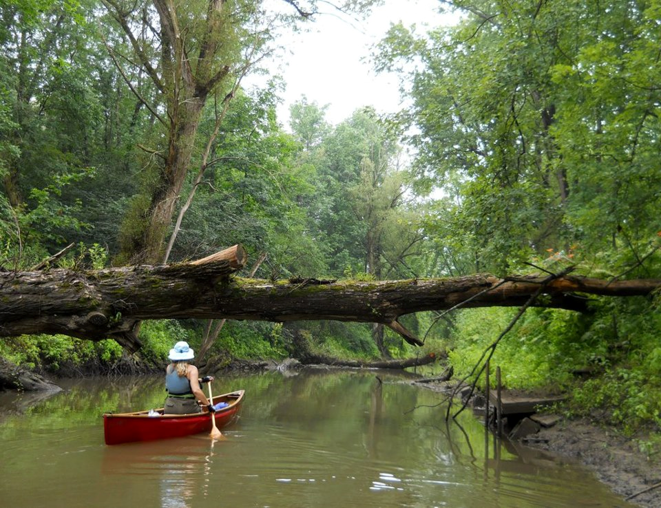 canoe_girl_tree_over_river.png