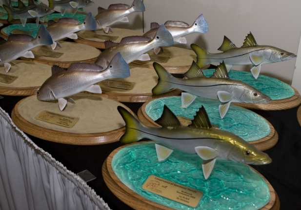 RedSnook_Trophy_table6.jpg