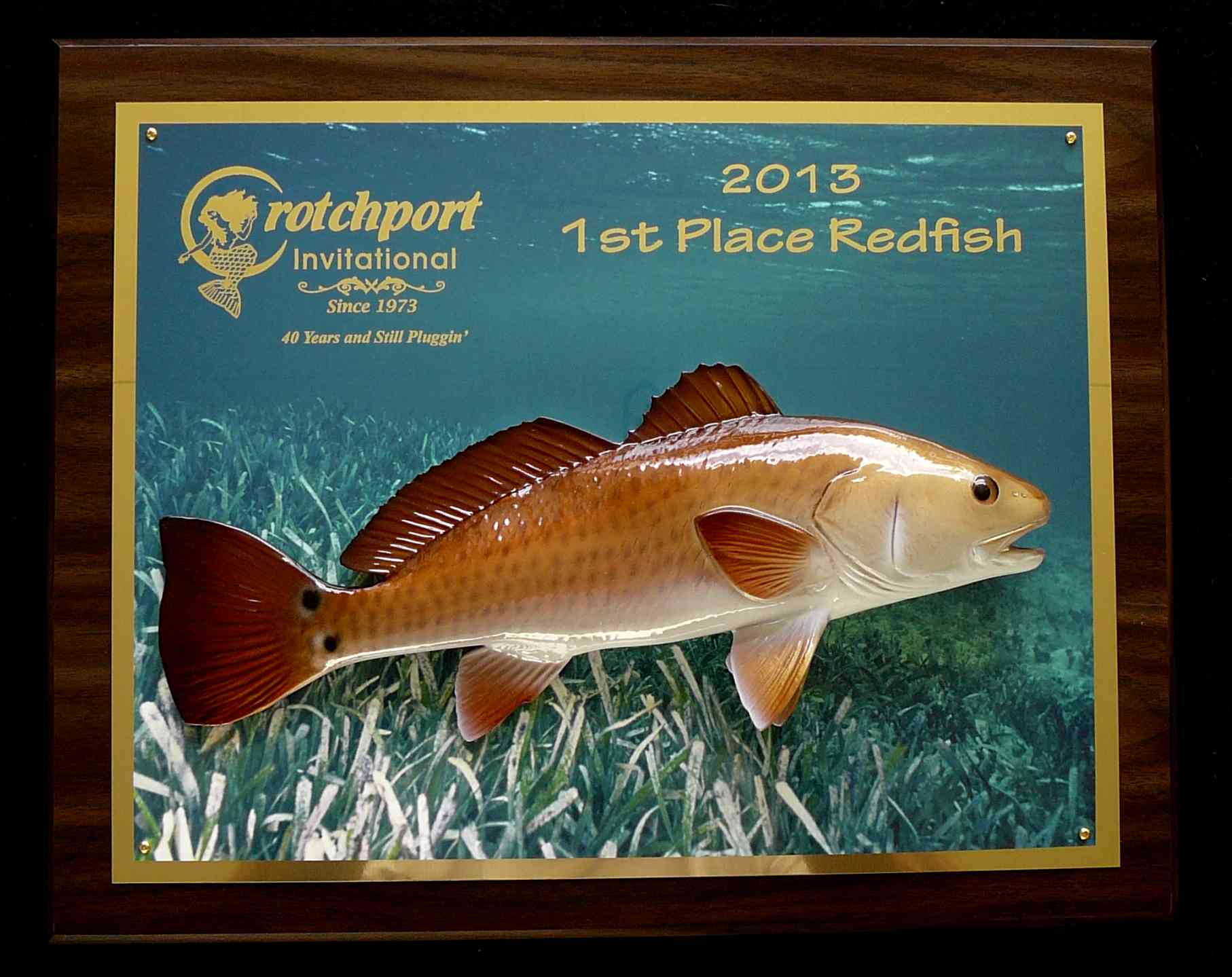 Redfish_plaque_photo_turtle_grass.jpg