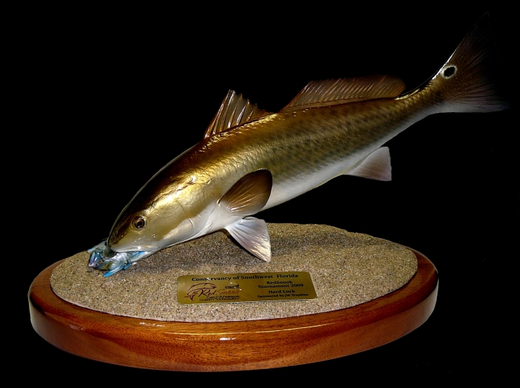 Redfish_trophy_7.jpg