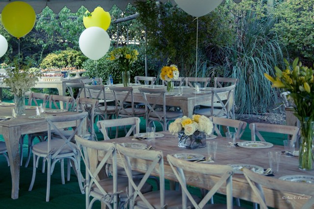 Country Style Seating Rentals