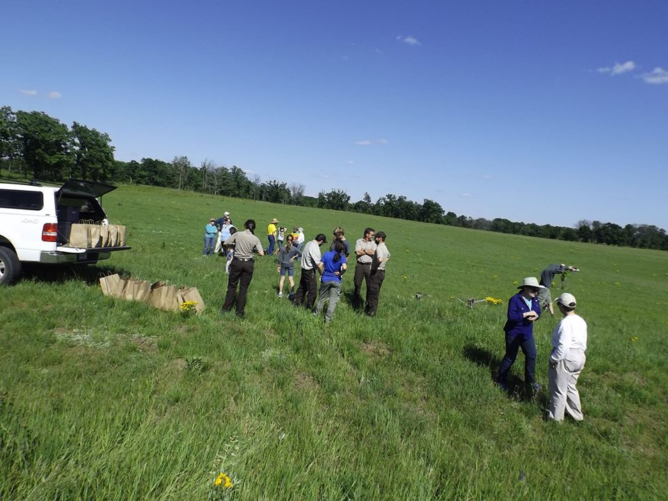 Friends of Sherburne Savanna Seeding Event
