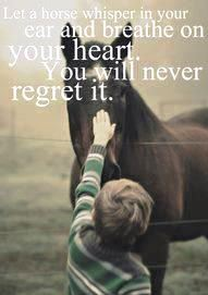 Horses_breathe_to_you_heart_-_Willow_Equine_NC.jpg