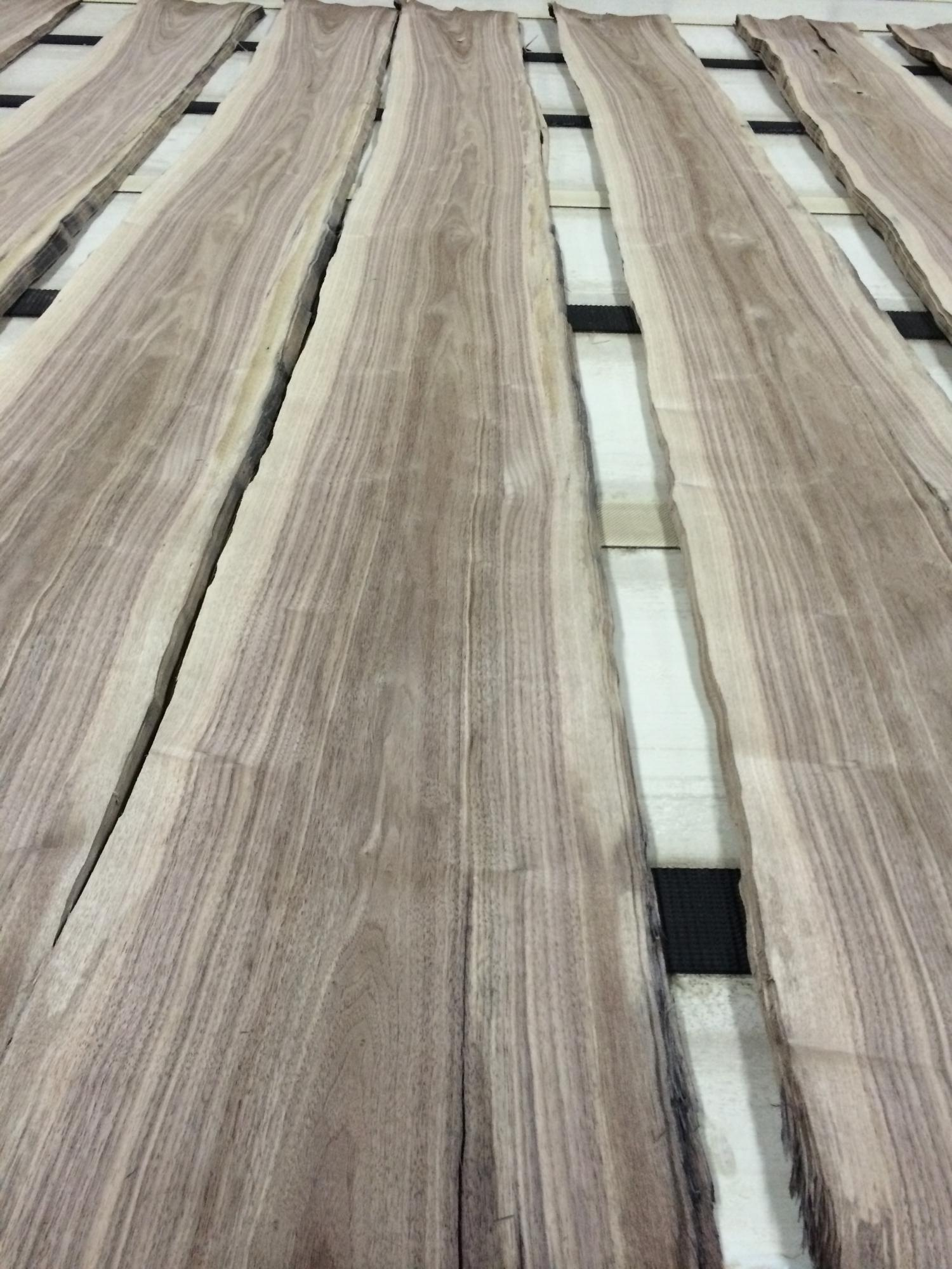 NCFP Walnut Flooring Veneer