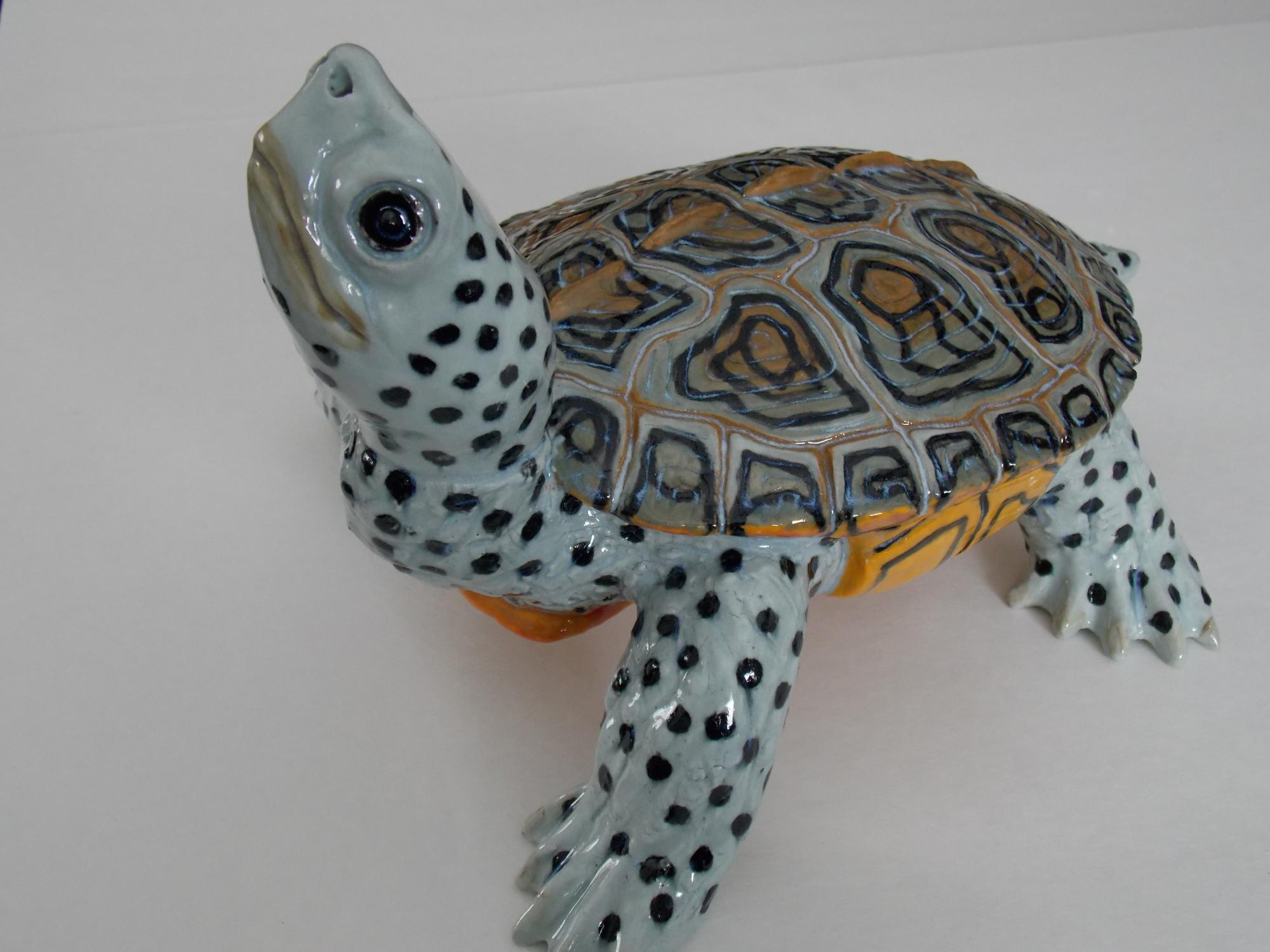 Malaclemys_terrapin_3__Muhich_2015__ceramic_cone_6__12_x_8_x_7_inches.JPG