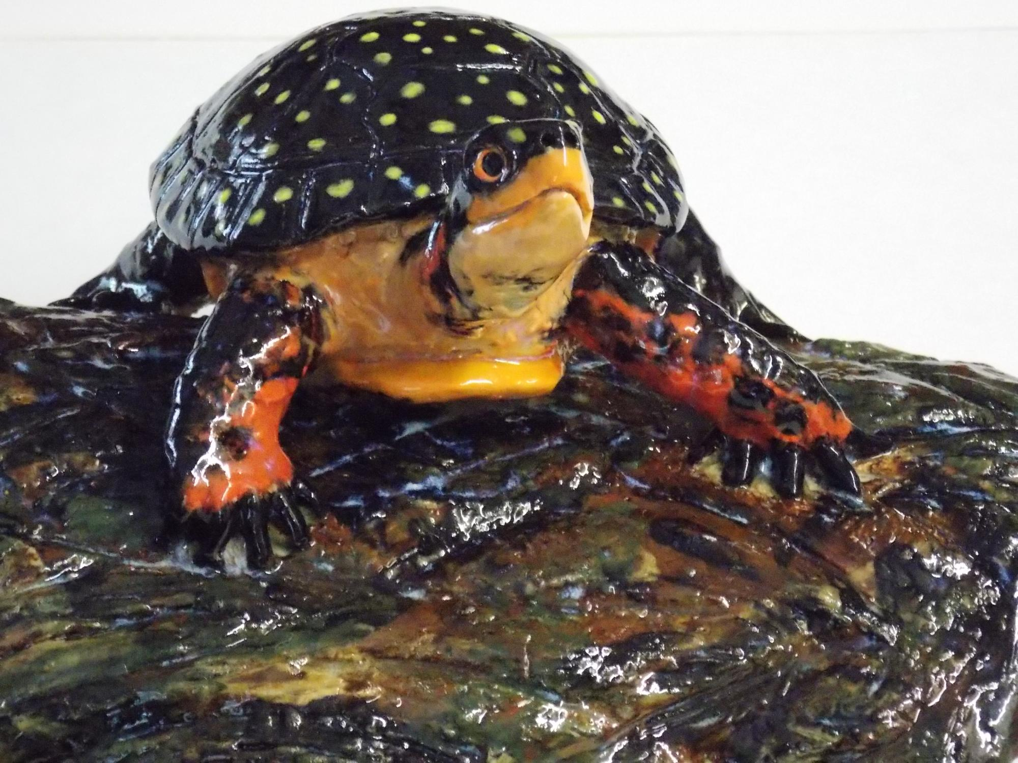 Spotted_Turtles_on_log__detail__Muhich_2015__cone_6_ceramic__16_x__8_x_6_inches.JPG