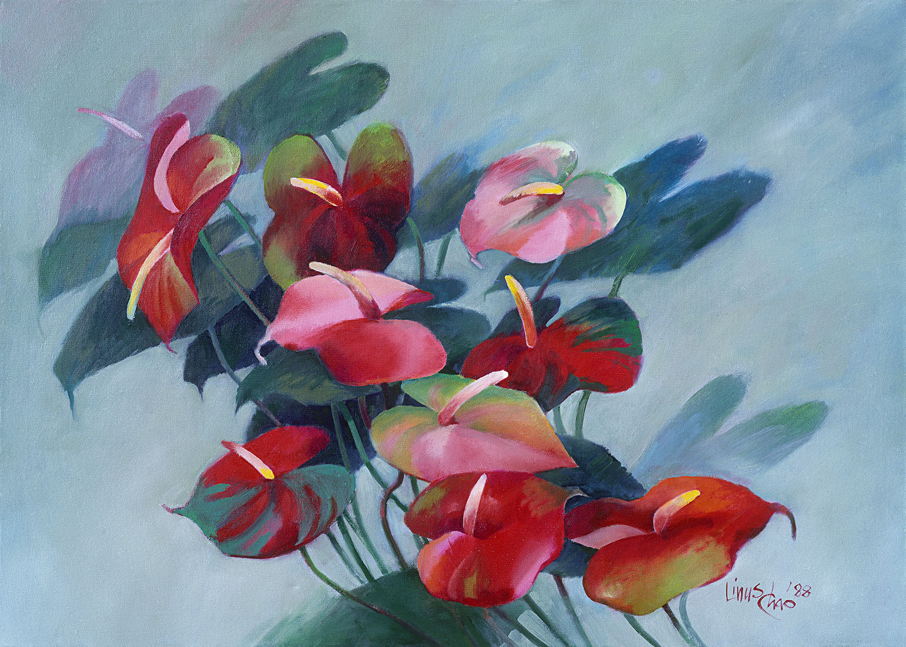 Anthurium_Flowers.jpg