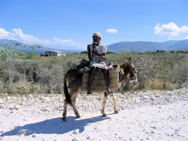 Woman_on_Donkey_422700_246160945478127_1329783752_n.jpg