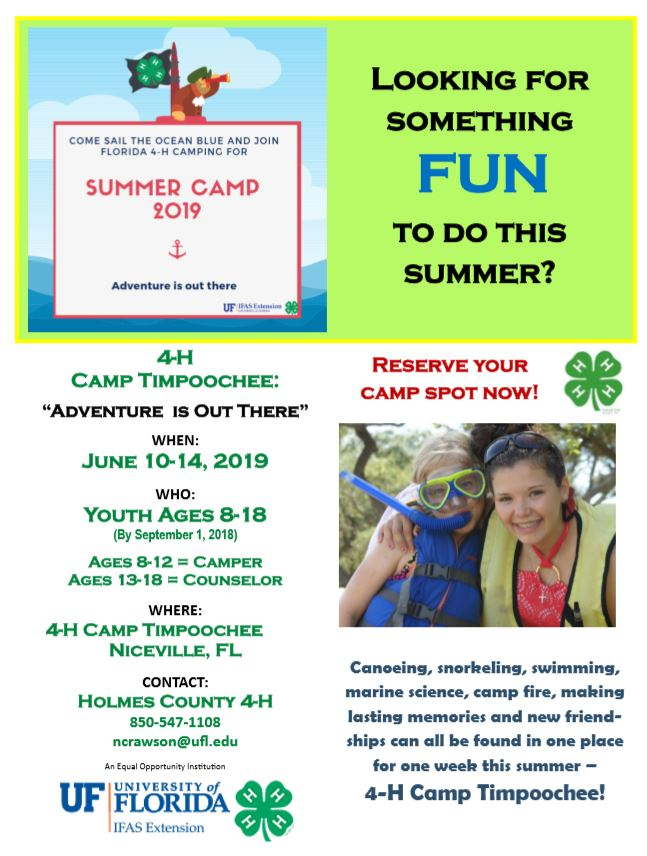 PIC_Camp_FLYER_2019_4-H.png