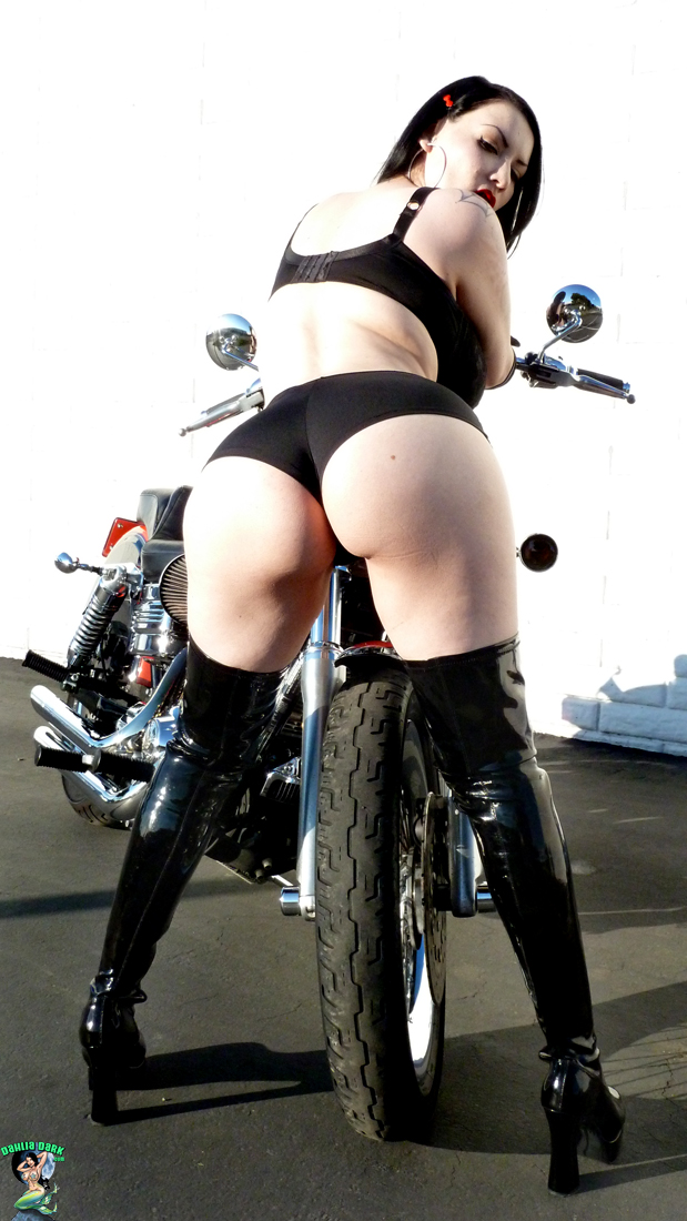 dahlia dark harley motorcycle biker girl