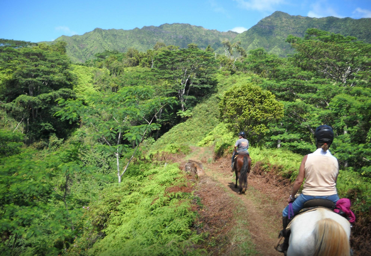 Horseback-riding-in-Kauai.png