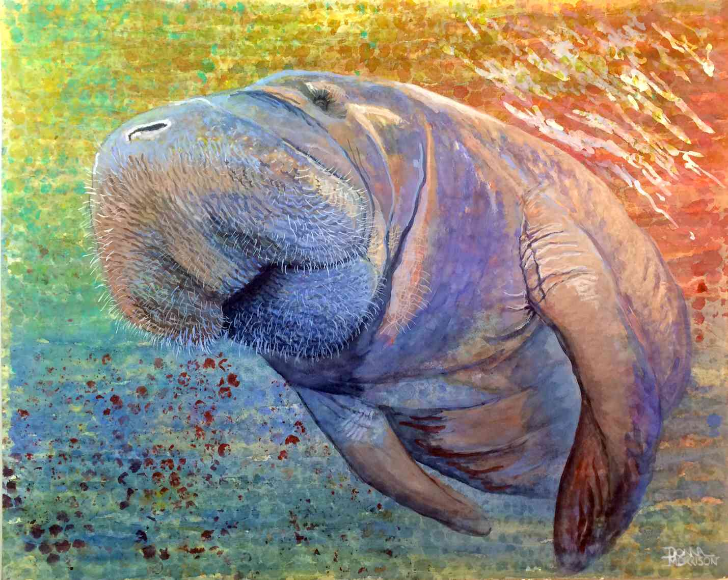 Shades of a Manatee