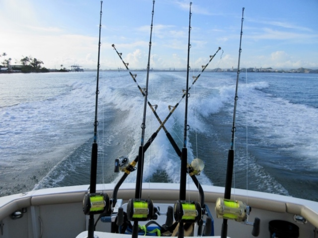 50 and 80 with blackfin rods