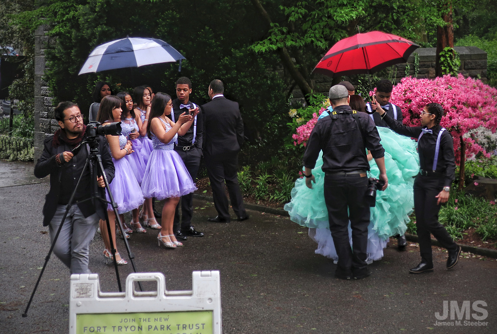 Wedding Party in Misty Park