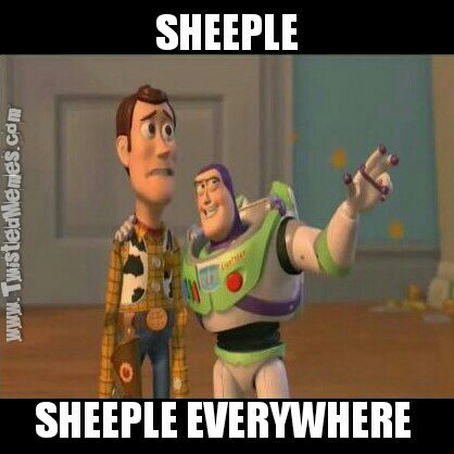woody_and_buzz_sheeple_wm.jpg