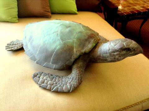 "Snapping Sea Turtle Resin L = 35"" W = 26"" H = 12"""