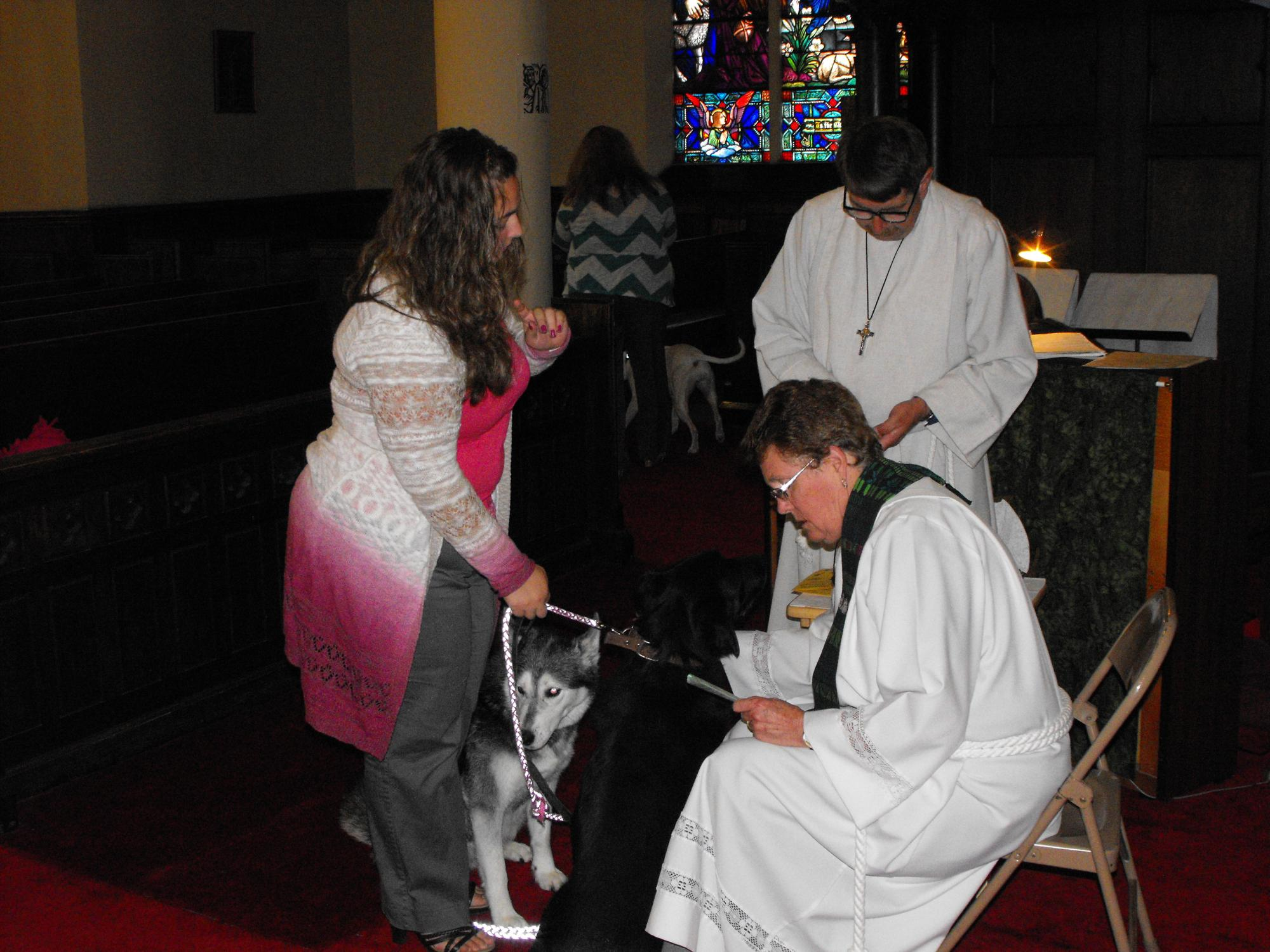 Blessing_of_the_Animals_10-4-150789.JPG