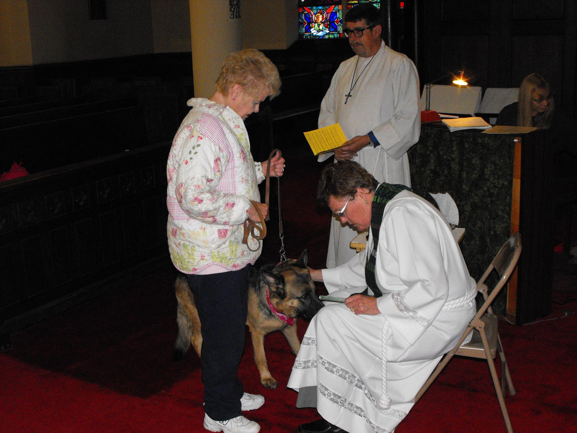 Blessing_of_the_Animals_10-4-15_062.JPG