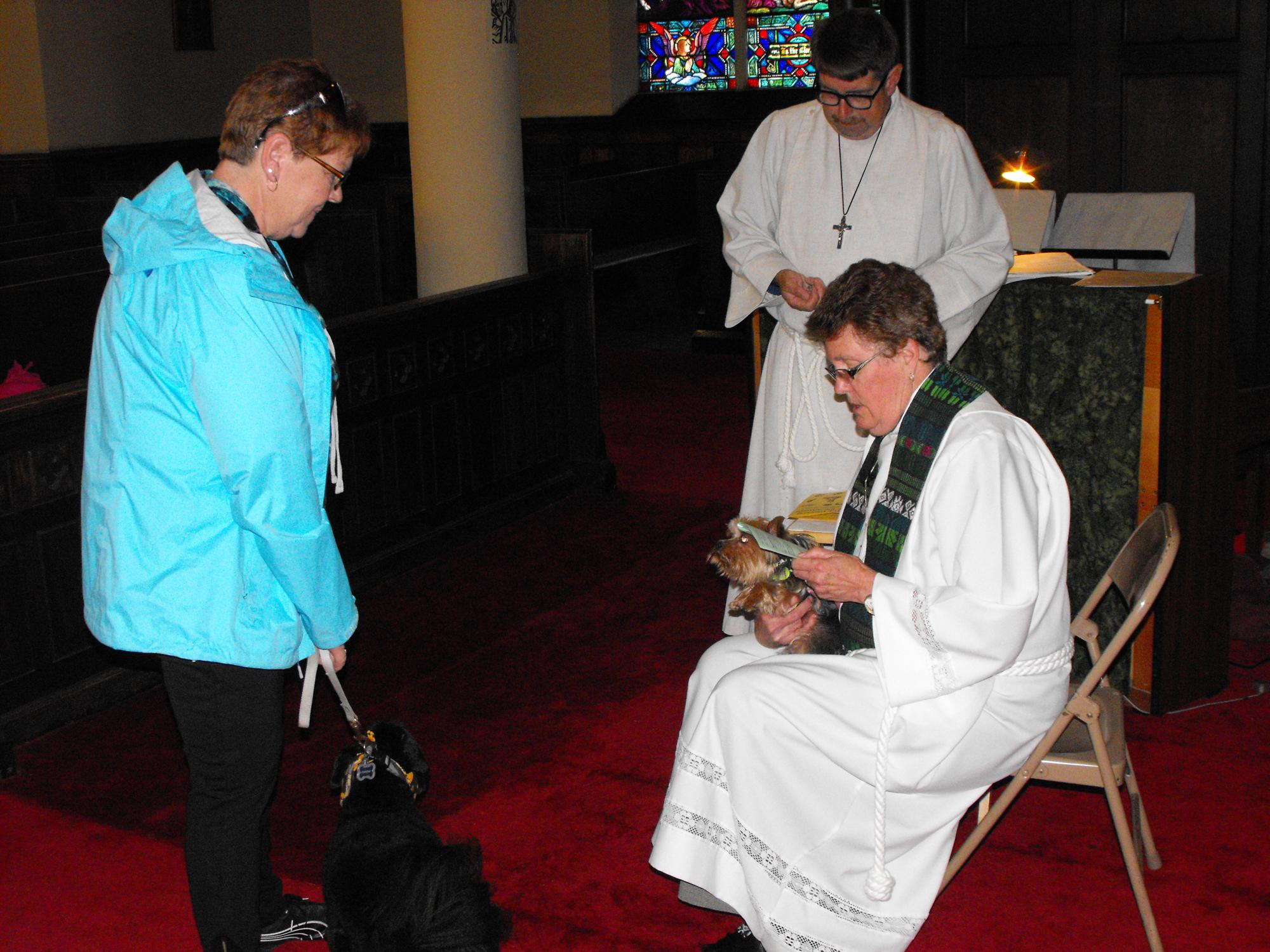 Blessing_of_the_Animals_10-4-15_067.JPG