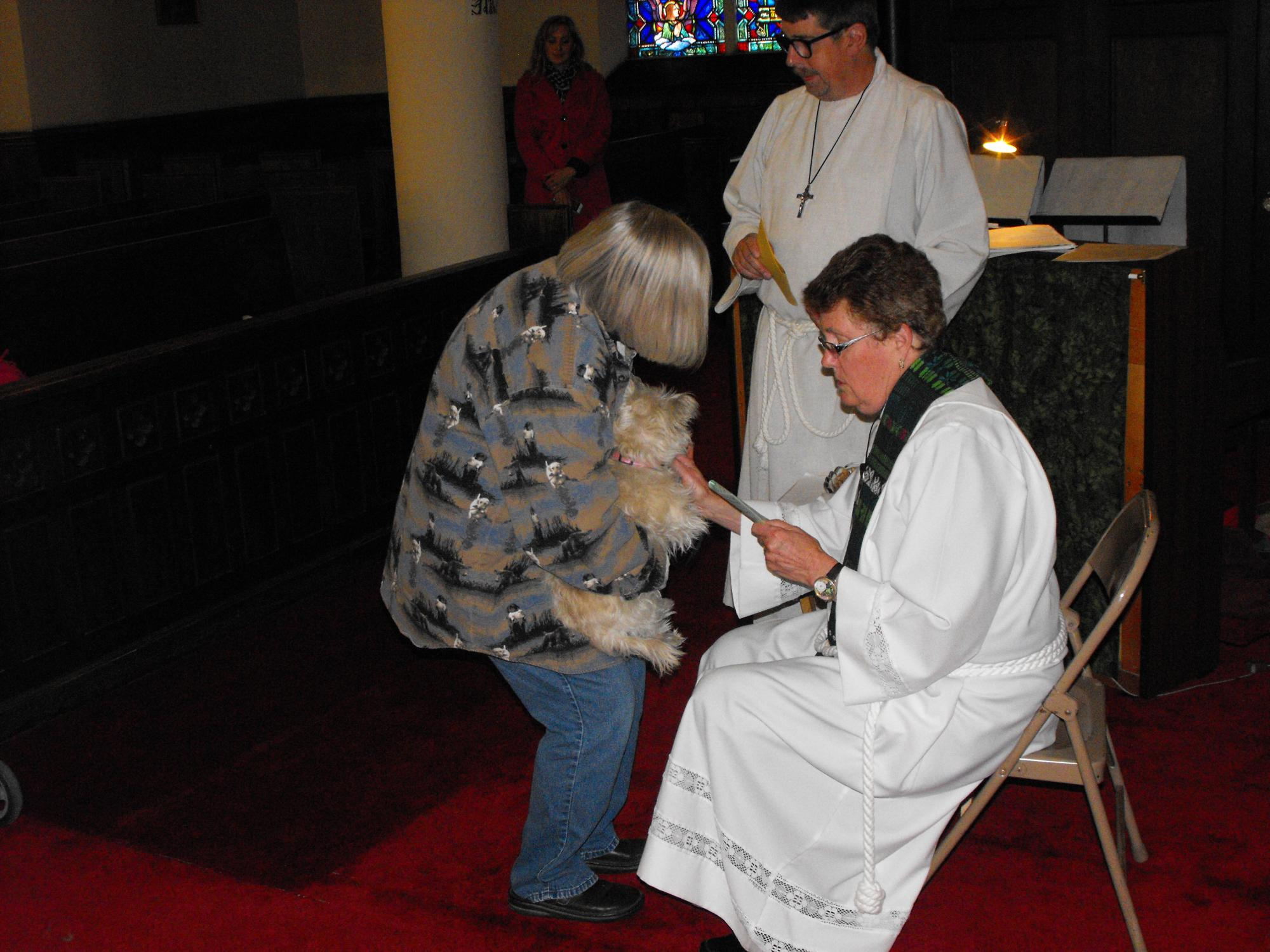 Blessing_of_the_Animals_10-4-15_070.JPG