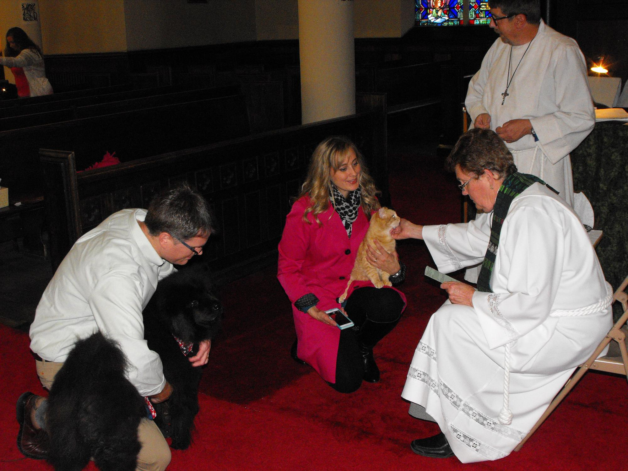 Blessing_of_the_Animals_10-4-163078.JPG