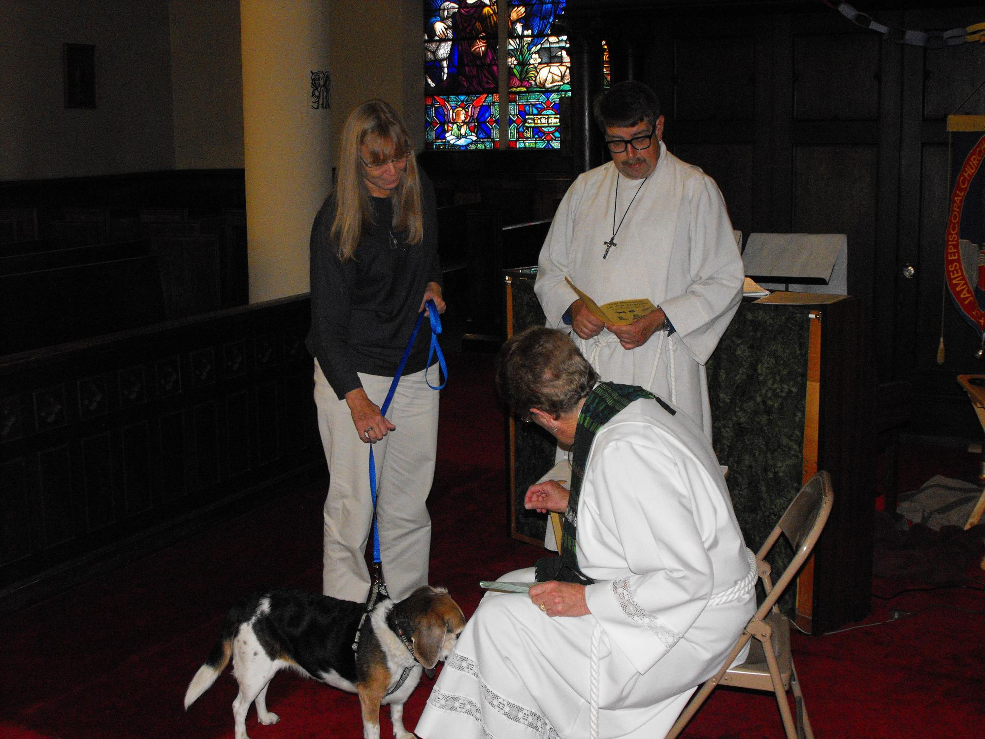 Blessing_of_the_Animals_10-4-16715.JPG