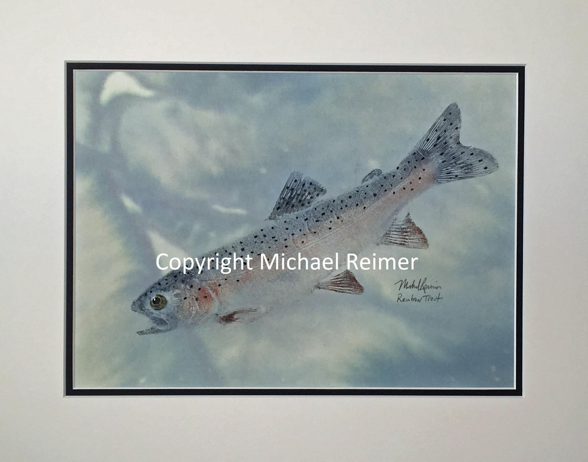 SOLD 1114-389_Rainbow_Trout.jpg