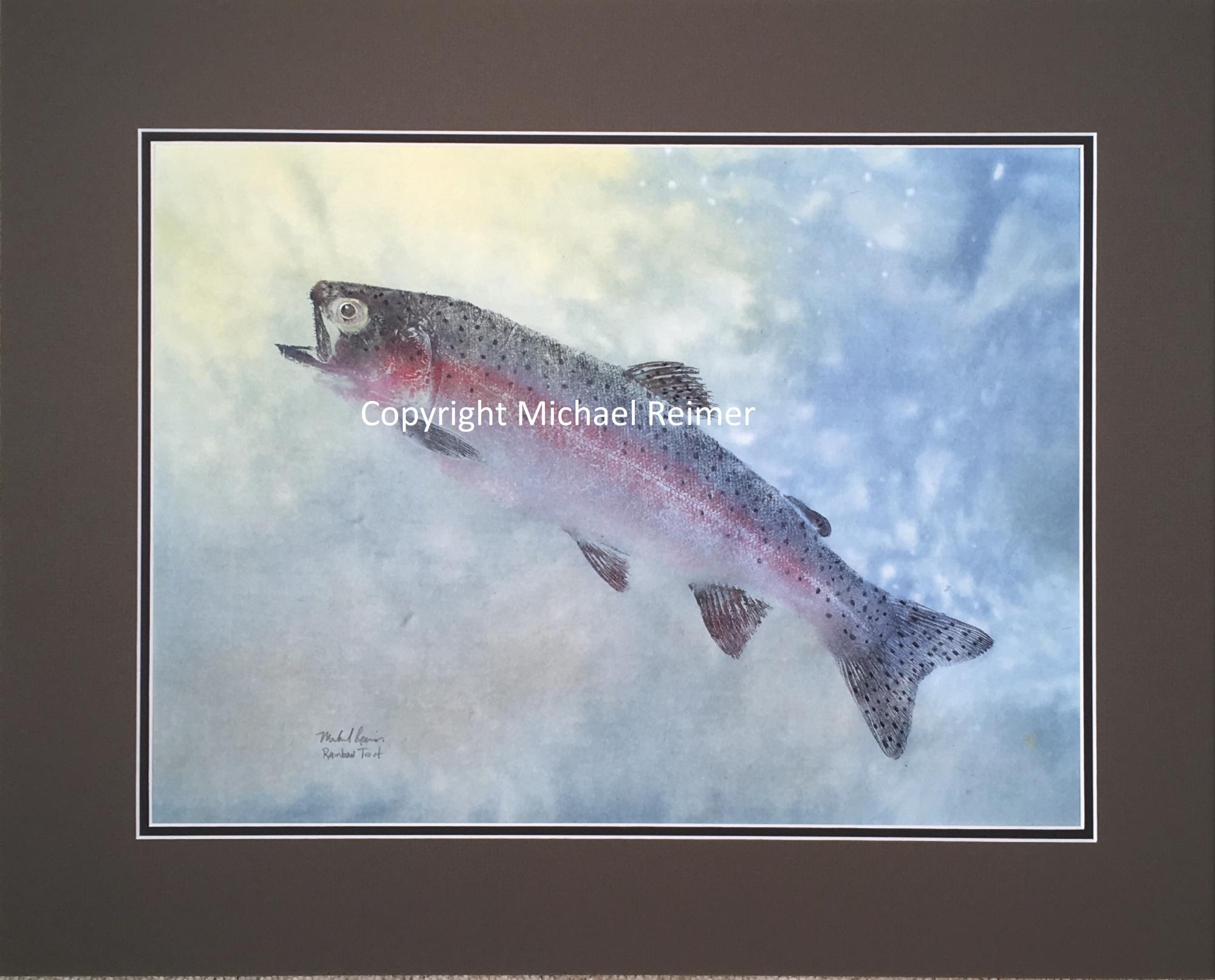 SOLD 1620-418_Rainbow_Trout.JPG