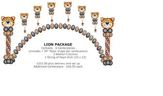 334_Lion_Package.jpg