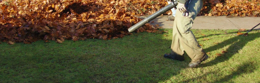 leaf-removal-service-Near-me-LDK-Lawn-Services.jpeg