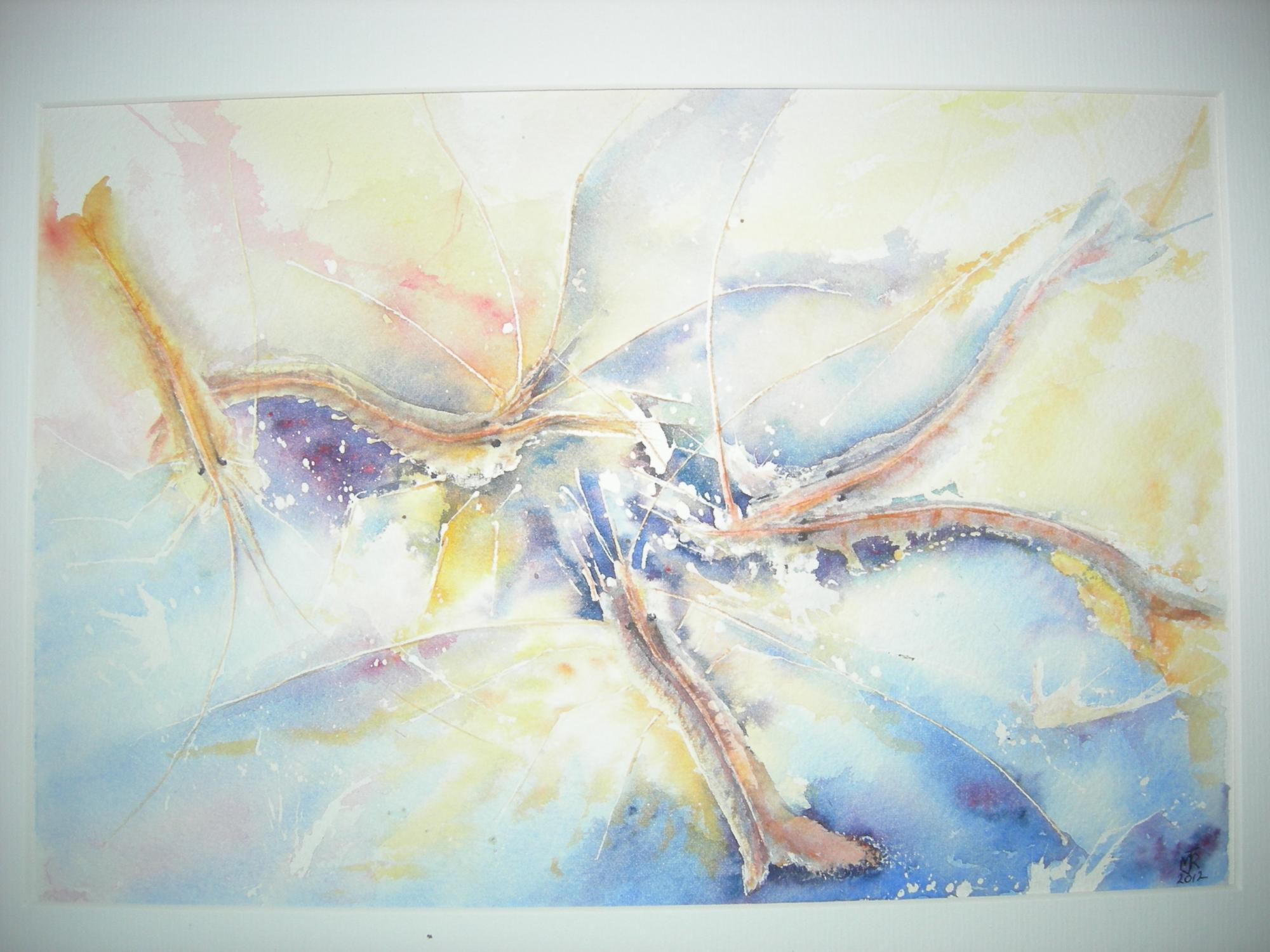 """SHRIMP, I"" £85  (Folio)"