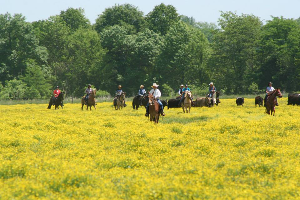 Riding at Tom Seay's Andora Farm in Virginia