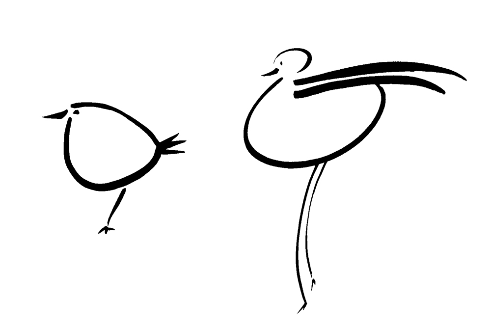 2-birds-illus-web.jpg