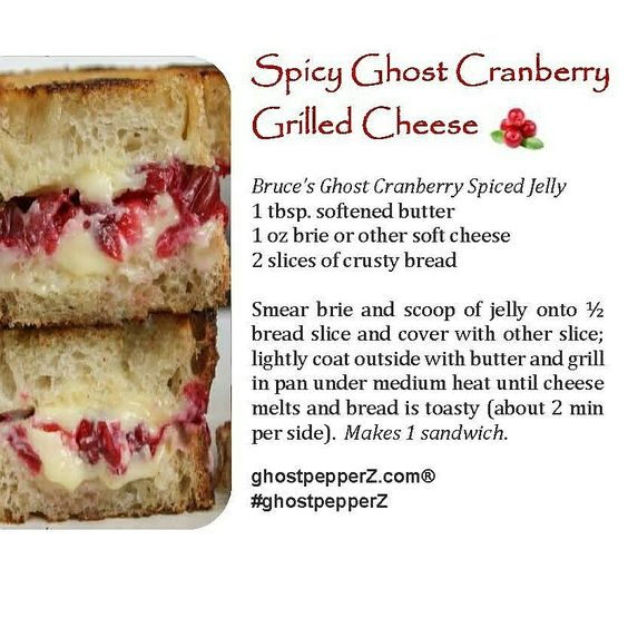 spicy grilled cheese and cranberry jelly recipe