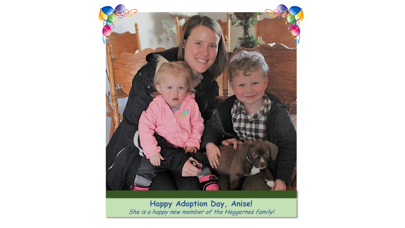 Anise_Adoption_Photo_2018_.jpg
