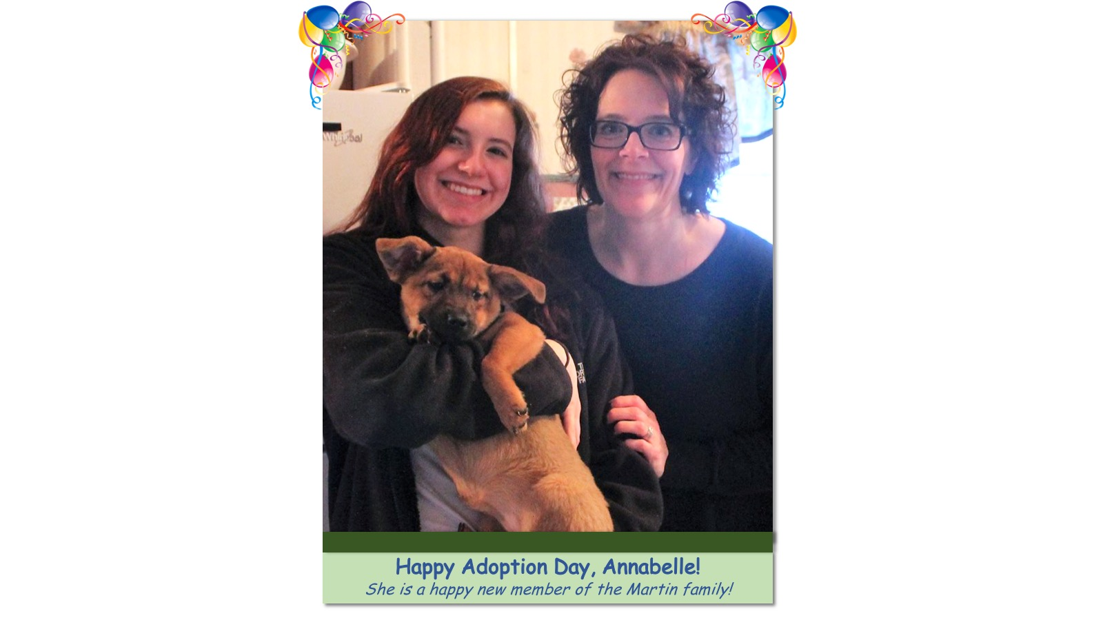 Annabelle_Adoption_Photo53198.jpg