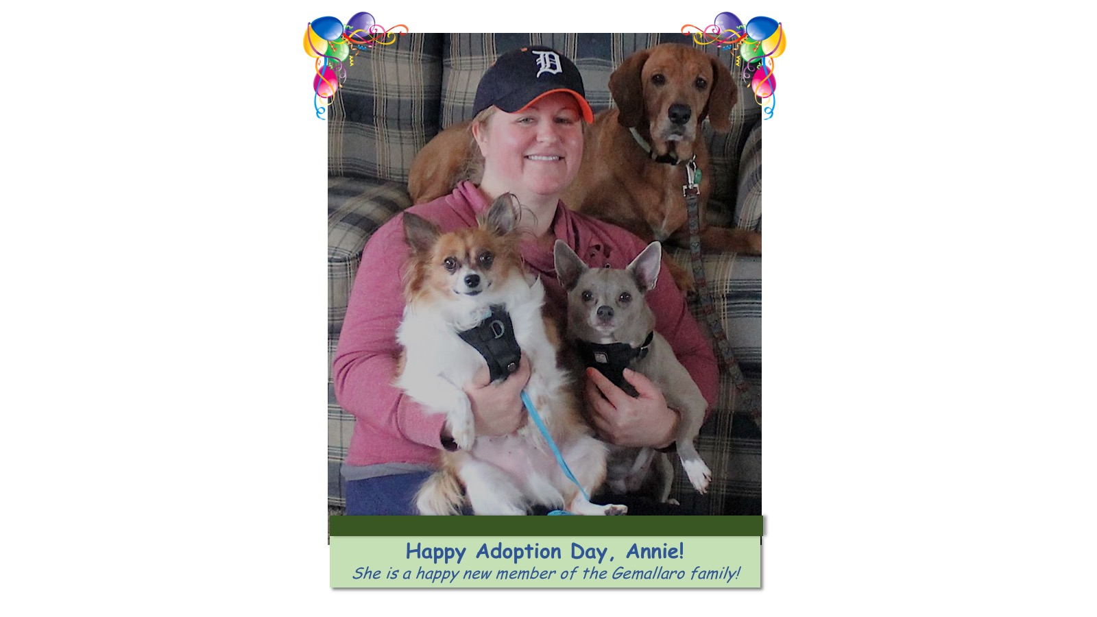 Annie_Adoption_Photo_2018.jpg