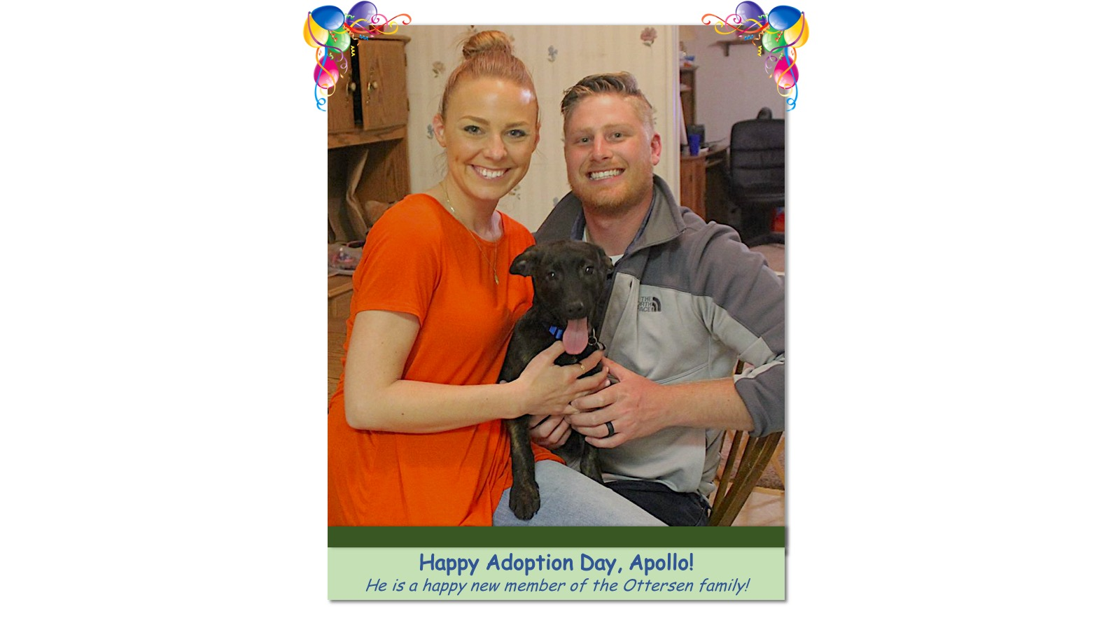Apollo_Adoption_Photo_2018.jpg