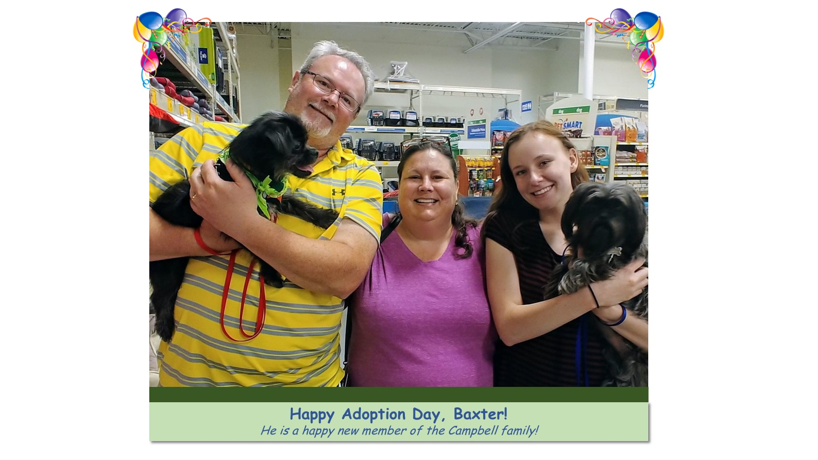 Baxter_Adoption_Photo_2018.jpg