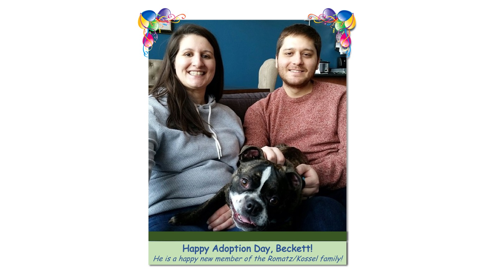Becket_Adoption_Photo_2018.jpg