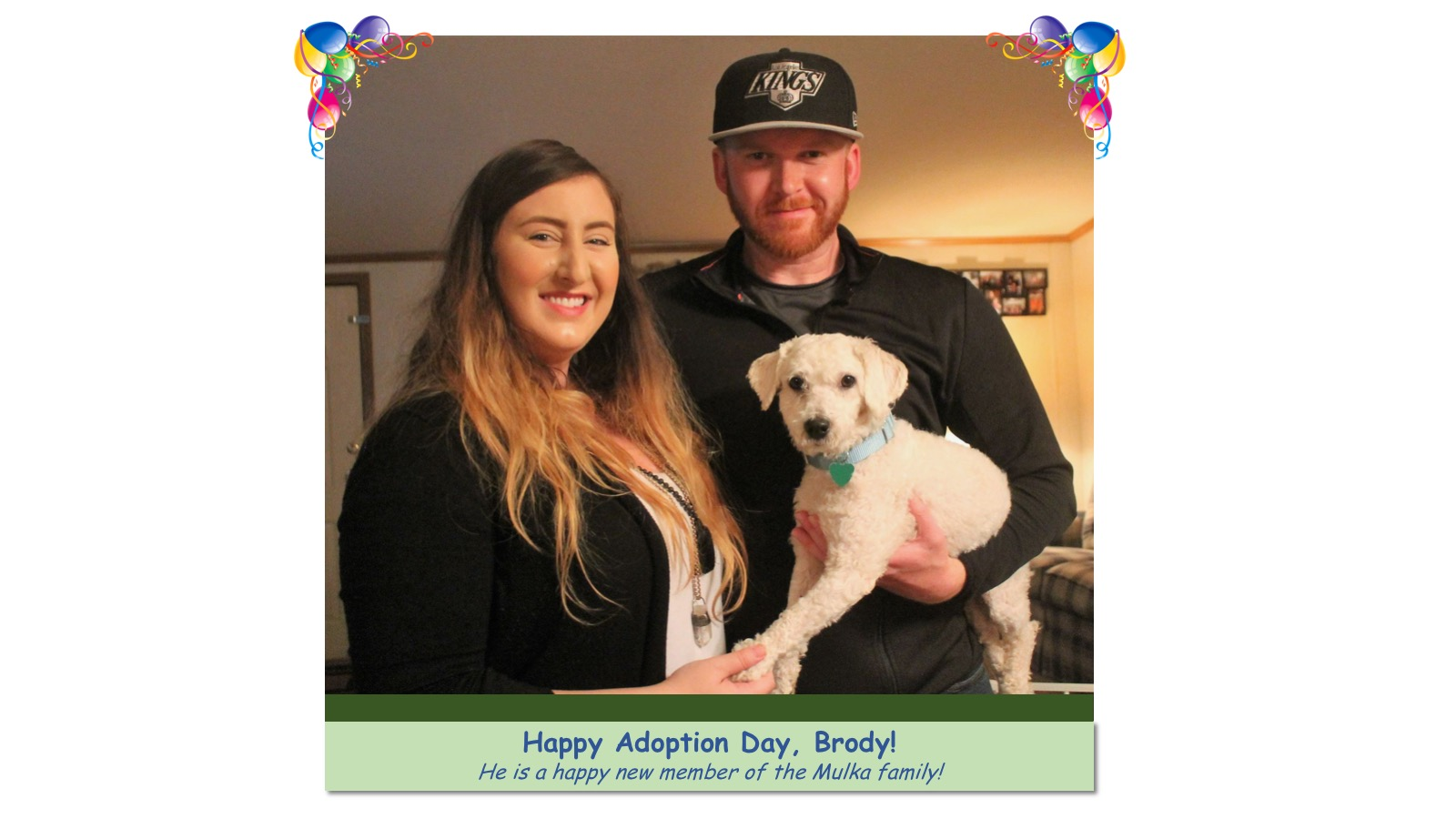 Brody_Adoption_Photo_2018.jpg