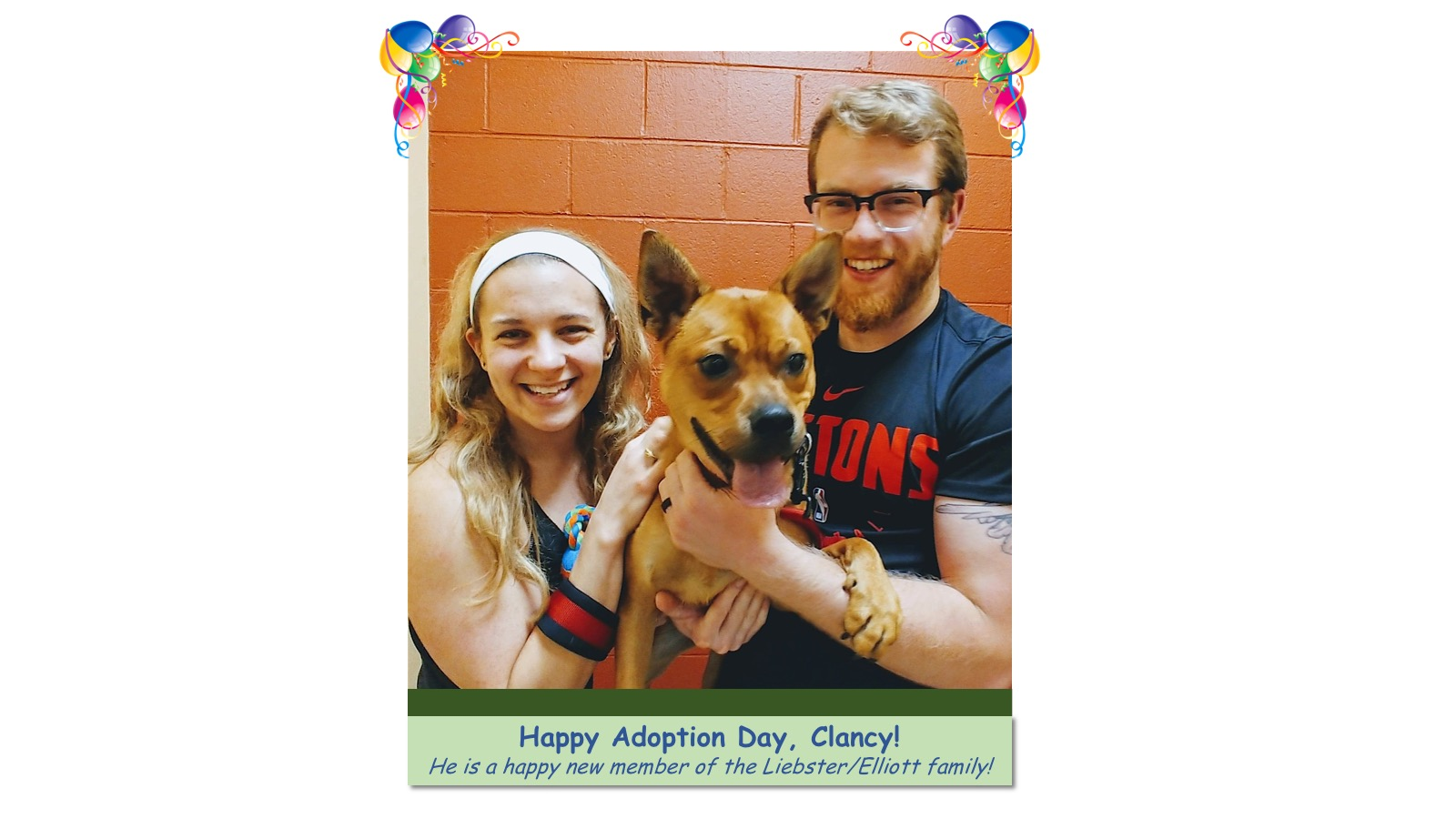 Clancy_Adoption_Photo_2018.jpg