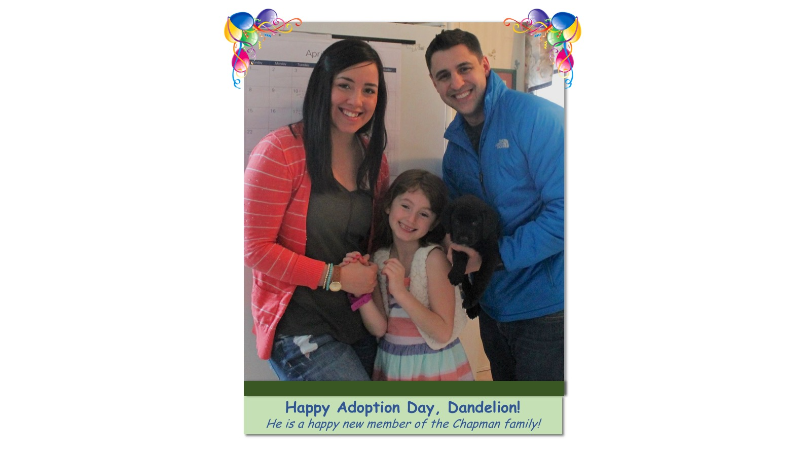 Dandelion_Adoption_Photo_2018.jpg