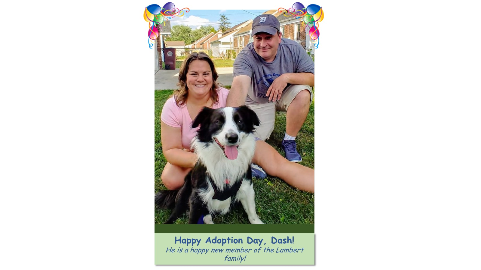 Dash_Adoption_Photo_2018.jpg