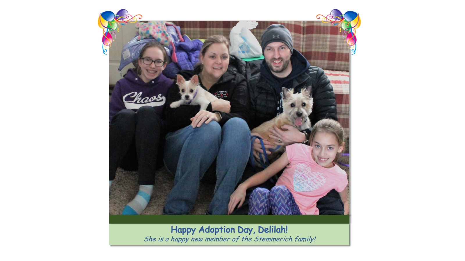 Delilah_Adoption_Photo_2018.jpg