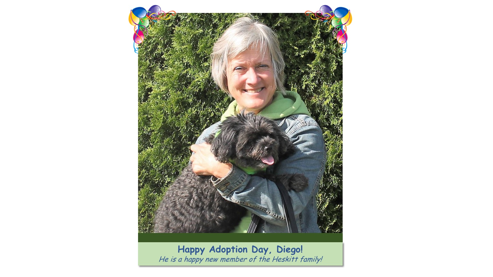 Diego_Adoption_Photo19616.jpg