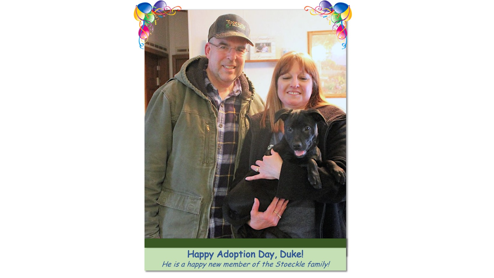 Duke_Adoption_Photo_201829432.jpg