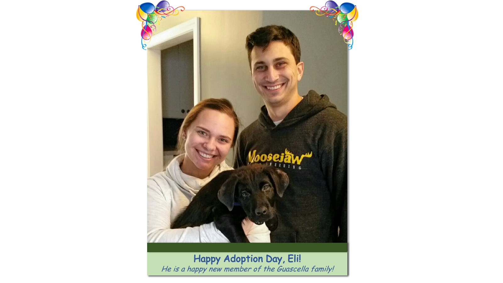 Eli_Adoption_Photo_201853793.jpg